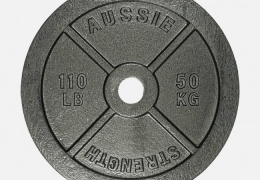 50kg-cast-iron-weight-plates